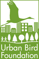 words Urban Bird Foundation, graphic depicting a bird flying over a cityscape