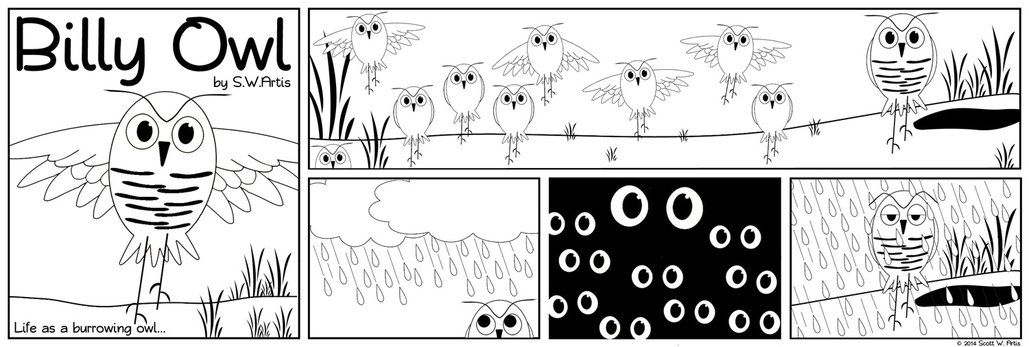 Billy Owl: Life as a burrowing owl