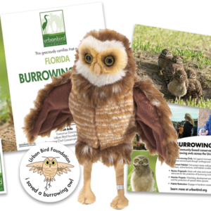 Florida Burrowing Owl Adoption